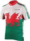 Image of Endura CoolMax Printed Wales II Short Sleeve Cycling Jersey AW16