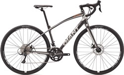 Image of Giant Anyroad 2 2017 Road Bike