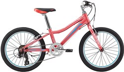 Image of Liv Enchant 20 Lite Girls 20w 2018 Kids Bike