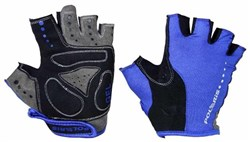 Image of Polaris Blade Mitts / Gloves
