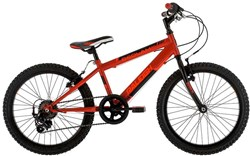 Image of Raleigh Bedlam 20w 2017 Kids Bike