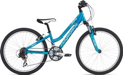 Image of Ridgeback Destiny 24w 2017 Junior Bike