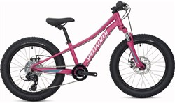 Image of Specialized Riprock 20w 2017 Kids Bike