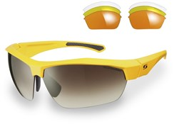 Image of Sunwise Shipley Sunglasses